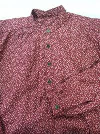Ivory Vines on Cranberry Band Collar Shirt