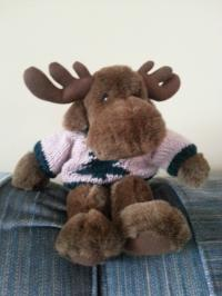 Moose Wearing Sweater with Tree